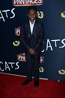 """LOS ANGELES - FEB 27:  Christian Isaiah at the """"Cats"""" Play Opening at the Pantages Theater on February 27, 2019 in Los Angeles, CA"""