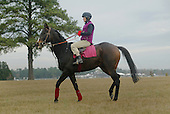 Flat Top, Janet Elliot, Springdale Race Course, Camden, SC., 2003