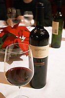 Bottle of Septima Mendoza 2002 Reserva from Codorniu Mendoza and a glass of wine. The Oviedo Restaurant, Buenos Aires Argentina, South America