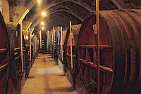 Europe/France/Languedoc-Roussillon/66/Pyrénées-Orientales/Collioure: Cave coopérative dans l'ancien couvent des dominicains (XIIème)