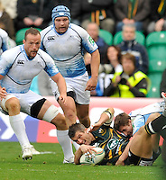 Northampton, England. Tom May of Northampton Saints tackled during the Heineken Cup Pool 4 match between Northampton Saints and Glasgow Warriors at Franklin's Gardens on October 14, 2012 in Northampton, England.