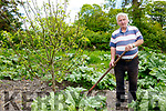 John Stack, Ballyduhig, Listowel who celebrated his 80th birthday recently pictured in his vegetable garden  at his home.