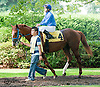 Bethel before The Nick Shuk Memorial Stakes at Delaware Park on 8/29/2013