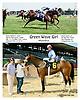 Green Wave Girl winning in a dead heat at Delaware Park racetrack on 6/18/14