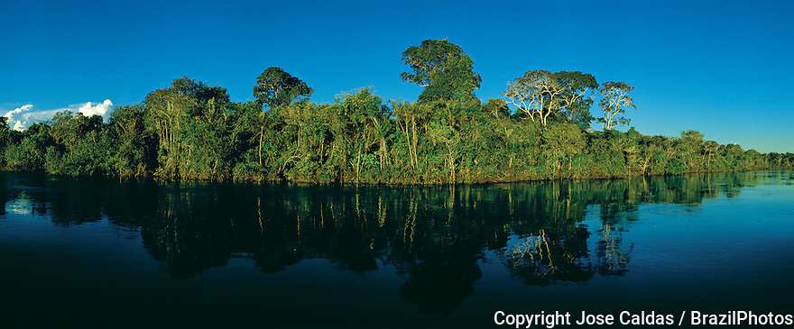 Preserved riverside and dense forest along Javae River bank in Bananal Island, Tocantins State, Amazon rainforest, Brazil.