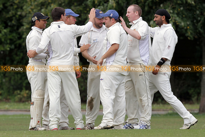 Hornchurch Athletic players celebrate the wicket of P Bist - Hornchurch Athletic CC (fielding) vs Barking CC - Essex Cricket League - 09/07/11 - MANDATORY CREDIT: Gavin Ellis/TGSPHOTO - Self billing applies where appropriate - Tel: 0845 094 6026 - contact@tgsphoto.co.uk