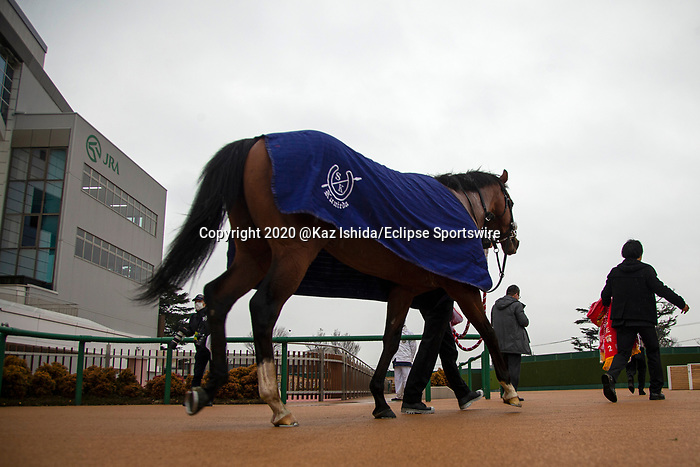 FUNABASHI,JAPAN-MAR 8: Satono Flag,ridden by Yutaka Take,wins the Deep Impact Kinen at Nakayama Racecourse on March 8,2020 in Funabashi,Chiba,Japan. Kaz Ishida/Eclipse Sportswire/CSM