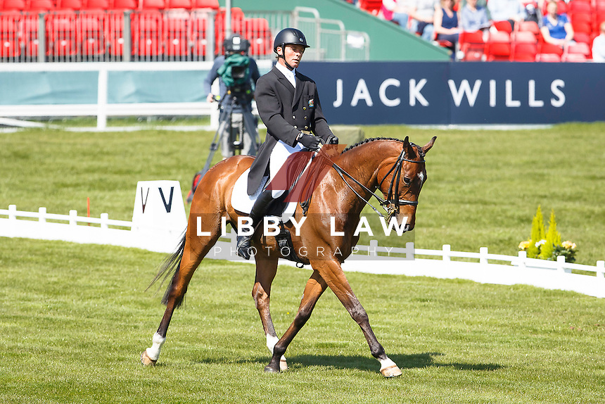 NZL-Dan Jocelyn (BEAUCATCHER) INTERIM-36TH: DRESSAGE - Day 1: 2016 GBR-Mitsubishi Motors Badminton Horse Trials CCI4* (Wednesday 4 May) CREDIT: Libby Law COPYRIGHT: LIBBY LAW PHOTOGRAPHY