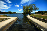 Henley Lake in Masterton, New Zealand on Wednesday, 14 December 2019. Photo: Dave Lintott / lintottphoto.co.nz
