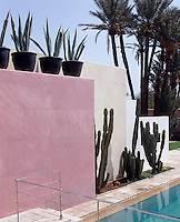 The floating wall beside the pool is painted in a range of colours and lined with cacti