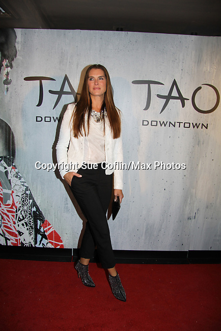 Brooke Shields at TAO Downtown Grand Opening NYC on September 28, 2013 in New York City, New York.  (Photo by Sue Coflin/Max Photos)