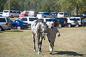 Dave Washer leads Junood from the barn to the paddock at Callaway.