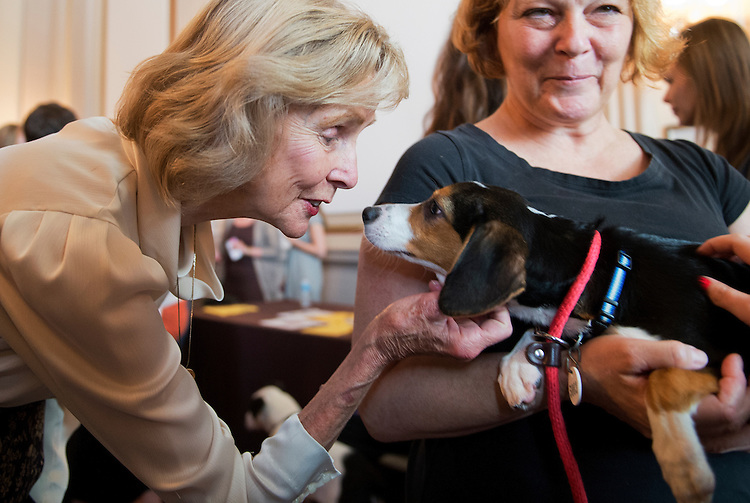 "UNITED STATES - JULY 30: Rep. Lois Capps, D-Calif., greets ""Marley,"" a beagle mix, and handler Kelly Andrews of the Prince Georges County Animal Shelter, during an American Society for the Prevention of Cruelty to Animals and the Congressional Animal Protection Caucus event in Cannon Building. The second annual ""Paws for Celebration!"" was held to bring attention to animals up for adoption and recognize the work of rescue organizations. (Photo By Tom Williams/CQ Roll Call)"