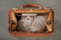 Willard Suitcases