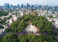 Jacaranda blossoms at Parque Mexico, Aerial drone photo, Colonia Condesa, Mexico City, Mexico