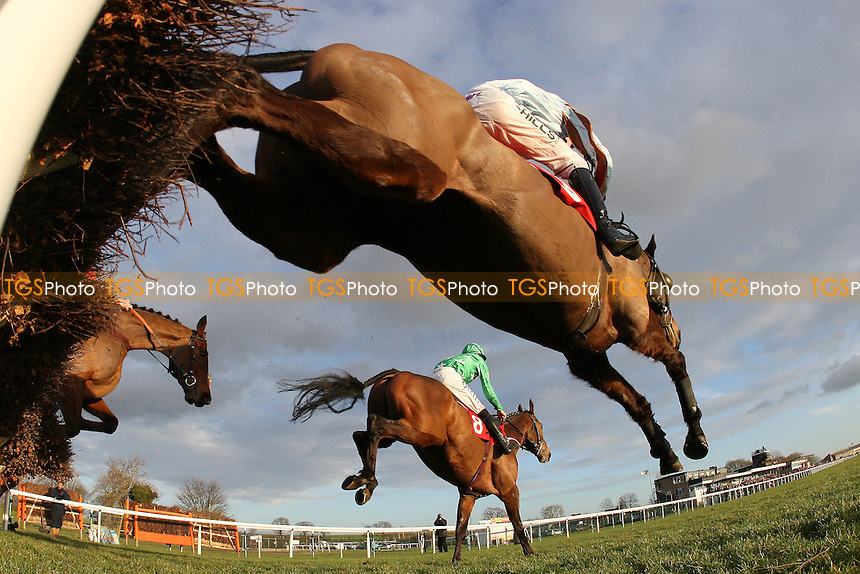 Race winner Theologist ridden by Joshua Moore (nearest camera) jumps during the Pertemps Handicap Hurdle (Series Qualifier) at Huntingdon Racecourse, Brampton, Cambridgeshire - 27/01/12 - MANDATORY CREDIT: Gavin Ellis/TGSPHOTO - Self billing applies where appropriate - 0845 094 6026 - contact@tgsphoto.co.uk - NO UNPAID USE.