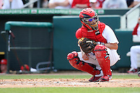March 20, 2010:  Catcher Jason LaRue (21) of the St. Louis Cardinals during a Spring Training game at the Roger Dean Stadium Complex in Jupiter, FL.  Photo By Mike Janes/Four Seam Images