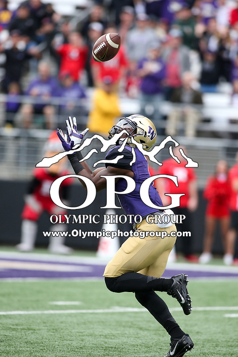03 September 2016:  Washington wide receiver #1 John Ross hauled in a 50-yard pass from Jake Browning in the first quarter against Rutgers.  Washington defeated Rutgers 48-13 at the University of Washington in Seattle, WA.