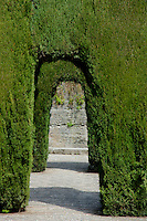 Pruned cypress trees forming archways in the gardens of Alhambra, a 14th-century palace in Granada, Andalusia, Spain.