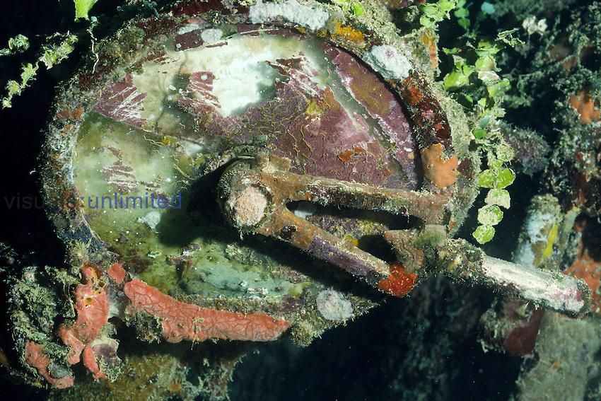 Marine growth covers part of a Japanese World War II shipwreck, Truk Lagoon, Micronesia.