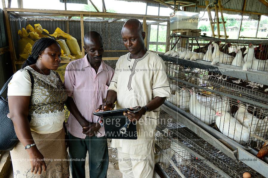NIGERIA, Oyo State, Ibadan, Dorf Ilora, Aufzucht von Brathaehnchen, Broiler, FADU Farmer Victor Oladimeji mit FADU Mitarbeitern Ade Adewoyin (rechts) und Bola Omutuso (links)