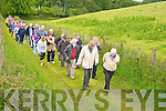 The pilgrims approach Killegy cemetery during the Muckross Pilgrimage Walk celebrating the golden jubilee of the Church of the Holy Spiirit, Muckross on Saturday.