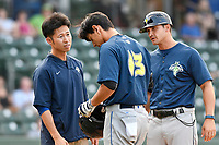 Shortstop Andres Gimenez (13) of the Columbia Fireflies is tended to by trainer Kiyoshi Tada and manager Jose Leger after being hit in the face by a foul ball bounced off the ground in a game against the Greenville Drive on Wednesday, August 23, 2017, at Fluor Field at the West End in Greenville, South Carolina. He remained in the game. (Tom Priddy/Four Seam Images)