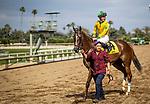 MAY 18: Flavien Prat celebrates winning the Gamely Stakes aboard Vasilika at Santa Anita Park in Arcadia, California on May 27, 2019. Evers/Eclipse Sportswire/CSM
