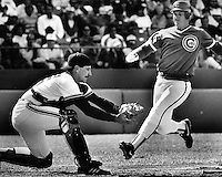 Giant catcher Bob Brenly ready to tag Cub runner Jody Davis out at home. (1986 photo by Ron Riesterer)