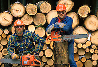 Two male loggers pose for a portrait with their chainsaws in front of a log pile. logging, lumberjack, man, men, job, work.
