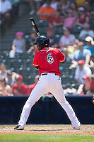 Daniel Carbonell (6) of the Richmond Flying Squirrels at bat against the Bowie Baysox at The Diamond on May 24, 2015 in Richmond, Virginia.  The Flying Squirrels defeated the Baysox 5-2.  (Brian Westerholt/Four Seam Images)