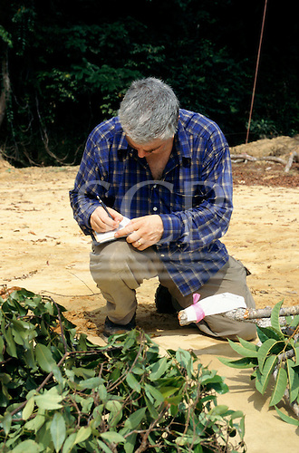 Makande, Gabon. William Grab making notes about fresh specimens of rainforest canopy plants.