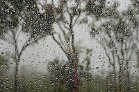 Rain on window in Wyndham AU.