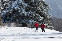 Europe/France/Franche-Comt&eacute;/25/Doubs/env de Pontarlier: Ski de fond au sommet du Larmont // France, Doubs, Near Pontarlier:Cross-country skiing at the top of Larmont<br /> Auto N&deg;: 2013-106 et Auto N&deg;: 2013-107