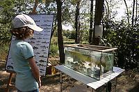 Laura Schätzke informiert sich über die im See lebenden Fischarten