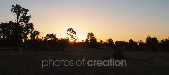 Rural Sunset Riverina District of New South Wales