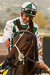 ARCADIA, CA  DECEMBER  30: #4 Daddys Lil Darling, ridden by Mike Smith,returns to the connections after winning the American Oaks (Grade l), on December 30, 2017, at Santa Anita Park in Arcadia, CA.(Photo by Casey Phillips/ Eclipse Sportswire/ Getty Images)
