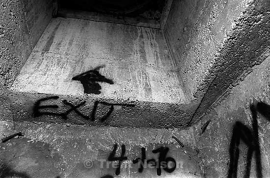Graffiti in sewer pipe.<br />