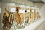 Natural Products Training Center.  Photo by Kevin Bain/Ole Miss Communications
