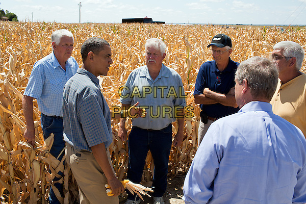 United States President Barack Obama holds ears of corn affected by the drought during his tour of the McIntosh family farm in Missouri Valley, Iowa, August 13, 2012. .half length blue shirt beige trousers corn field side profile .CAP/ADM/CNP.©CNP/ADM/Capital Pictures.
