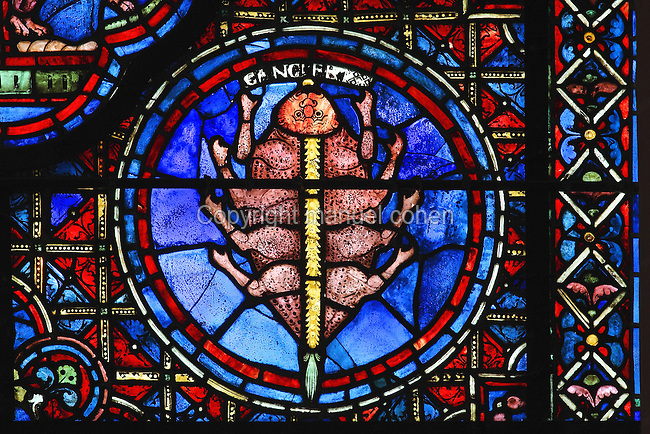 Fantastic crab with 8 claws, yellow spine, green tail and yellow tongue representing Cancer, from the Zodiac and the labours of the months stained glass window, 1217, in the ambulatory of Chartres Cathedral, Eure-et-Loir, France. This calendar window contains scenes showing the zodiacal symbol with its corresponding monthly activity. Chartres cathedral was built 1194-1250 and is a fine example of Gothic architecture. Most of its windows date from 1205-40 although a few earlier 12th century examples are also intact. It was declared a UNESCO World Heritage Site in 1979. Picture by Manuel Cohen