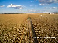 63801-08704 Corn Harvest, John Deere combine harvesting corn - aerial Marion Co. IL
