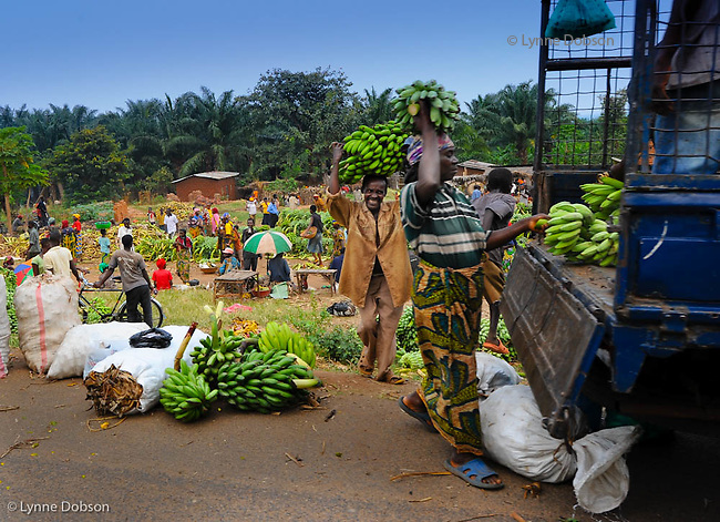 Burundi is chock full of banana trees and many Burundians lead agrarian lives with an economy mostly based on agriculture. These people bought bananas at the local market to sell them in the capitol city of Bujumbura, the largest city in this tiny country.