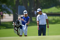 Hideki Matsuyama (JPN) talk over his chip shot with his caddie on 8 during 3rd round of the 100th PGA Championship at Bellerive Country Club, St. Louis, Missouri. 8/11/2018.<br /> Picture: Golffile | Ken Murray<br /> <br /> All photo usage must carry mandatory copyright credit (&copy; Golffile | Ken Murray)
