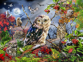 Lori, REALISTIC ANIMALS, REALISTISCHE TIERE, ANIMALES REALISTICOS, paintings+++++Owls In The Moonlight_4_72,USLS34,#A#, EVERYDAY ,puzzles