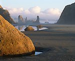 Bandon Beach, OR<br /> Late light on the tide pools and seastacks of Bandon Beach