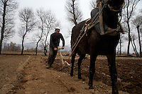 A farmer uses a horse to plow a field while family members plant seeds outside Linxia, Gansu, China.