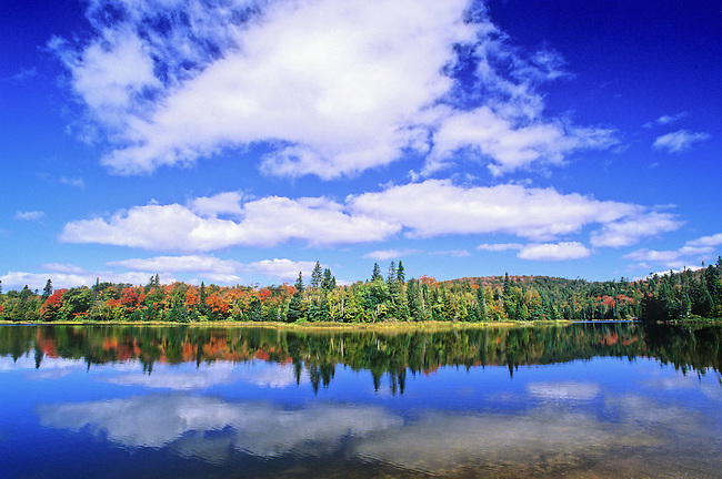 Cumulous clouds, blue sky and fall colors of Maple reflects into the still waters of Crescent Lake in Canada's Lake Superior Provincial Park in Ontario.