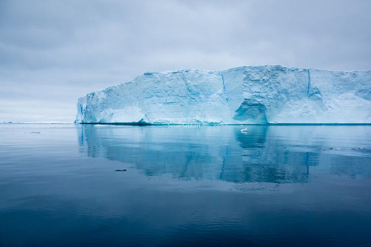 Icebergs near Anderson Island, Antarctica