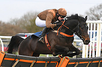 Flowing Cadenza ridden by Sean Houlihan jump the last in  The Racing TV Profits returned to Racing'National Hunt' Novices' Hurdle  during Horse Racing at Wincanton Racecourse on 5th December 2019